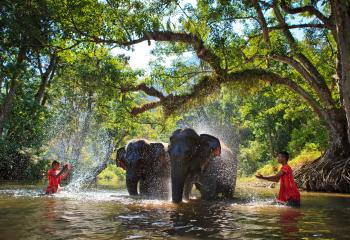 Best Thailand Tours Vacations Travel Packages Orient - Vacation to thailand